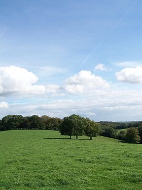 Chilterns England Rolling Countryside.jpg