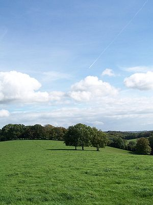 Chiltern Hills - Image: Chilterns England Rolling Countryside