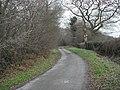 Chithurst Lane - geograph.org.uk - 643293.jpg