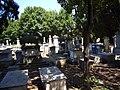 Cimiterio ebraico di pisa 2009 general viey.JPG
