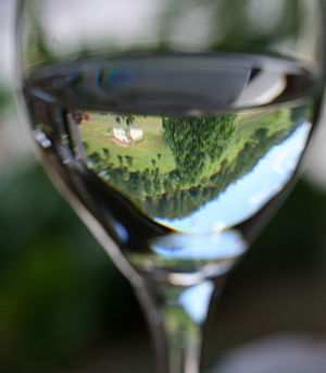 A glass of Chablis wine demonstrating the clar...