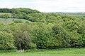 Clayhidon, footpath to Ringdown Common - geograph.org.uk - 174833.jpg