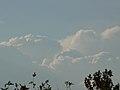 Clouds (393940522).jpg