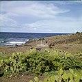 Collectie Nationaal Museum van Wereldculturen TM-20030094 Drenkplaats voor vee aan een brakwaterbron nabij kust. Sint Eustatius Boy Lawson (Fotograaf).jpg