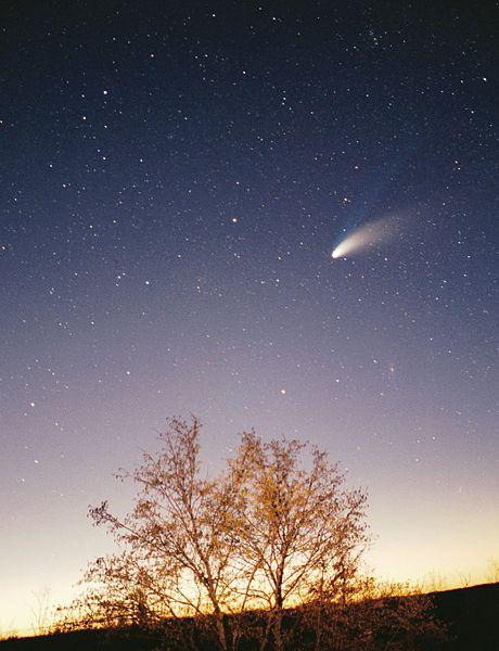 Cometa Hale-Bopp. Autore Philipp Salzgeber.