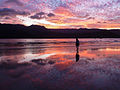 Cool sunset reflection shot (8034664979).jpg