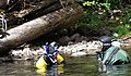 Counting Fish on the Salmon River (15014941390).jpg