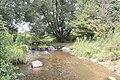 Creek - panoramio (10).jpg