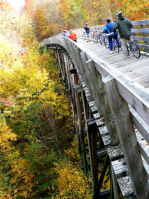 Virginia Creeper Trail - Riders stop at one of the high trestles on the Virginia Creeper Trail.