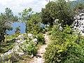 Cres Croatia - panoramio.jpg