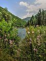 Crni Drim River 84.jpg