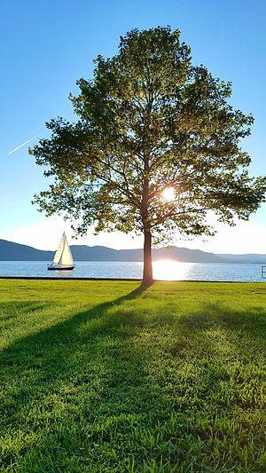 Croton Point Park - Image: Croton Point Park