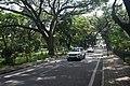 Cubbon Park DSC 5404.jpg