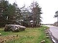 Cumberland's Stone - geograph.org.uk - 1247038.jpg