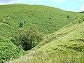 Cwm Nant Iwan, near Doethie Fach, Ceredigion - geograph.org.uk - 514162.jpg