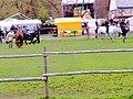 Dārza svētki Burbišķu pils parkā 2011.g.7.maijā - panoramio.jpg