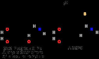 Dopamine receptor D1 - Image: D1 agonists