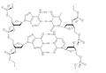 DNA As Structure Formula (dumb version).png