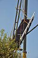DSC 4149 Molen Laaglandse Molen trap.jpg