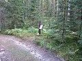 Degučių sen., Lithuania - panoramio (211).jpg