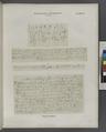 Demotische Inschriften No. 141-144. Tempel von Dakkeh (El-Dakka) (NYPL b14291191-44289).tiff