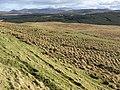 Dersalloch Moorland - geograph.org.uk - 351687.jpg
