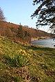 Derwent Reservoir - geograph.org.uk - 385197.jpg