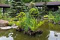 Devant un pavillon japonais du Parc Floral.jpg