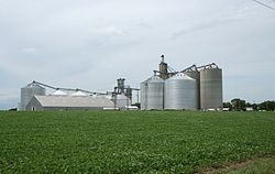 Dewey Illinois grain elevators.jpg