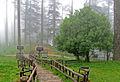 Dhanaulti Eco park.JPG