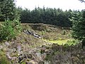 Disused Quarry - geograph.org.uk - 528192.jpg