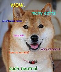 Doge homemade meme.jpg