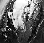 Dogshead Glacier and Capps Glacier, terminus of mountain glacier with firn line, edge of valley glacier, and hanging glaciers (GLACIERS 6439).jpg