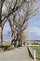 Douglas County - panoramio (94).jpg