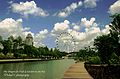 Dragonfly Lake, Gardens by the Bay, Singapore - 20111117-01.jpg