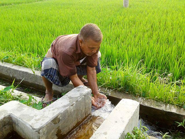 Många brunnar i till exempel Bangladesh har vatten med förhöjda halter arsenik.