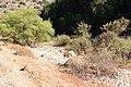 Dry Dishon River 3.JPG