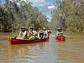 Drysdale River, Western Australia.JPG