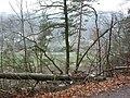 Dscn3514 - panoramio.jpg