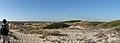 Dunas de São Jacinto, Nature Reserve (8089851445).jpg