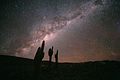 Echinopsis Atacamensis and the Milky Way.jpg