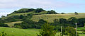 Eggardon Hill from southwest.JPG