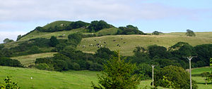 Eggardon Hill - Eggardon Hill from the South West, August 2009