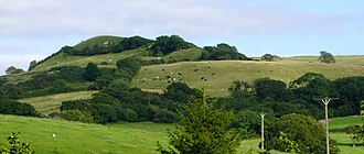 Hardy (hill) - Eggardon Hill, an English Hardy and the highest point on the South Dorset Downs