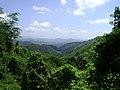 El Cerro - panoramio.jpg