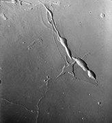 Elysium Chasma 844A20.jpg