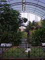 En el Jardin Botanico Valencia Spain.JPG