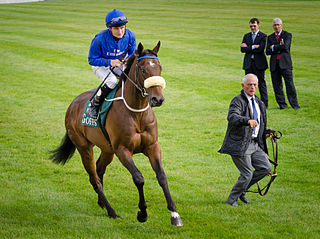 Encke (horse) American-bred Thoroughbred racehorse