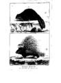 Encyclopedie volume 5-037.png