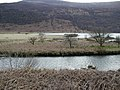 End of Ennerdale Water - geograph.org.uk - 763523.jpg